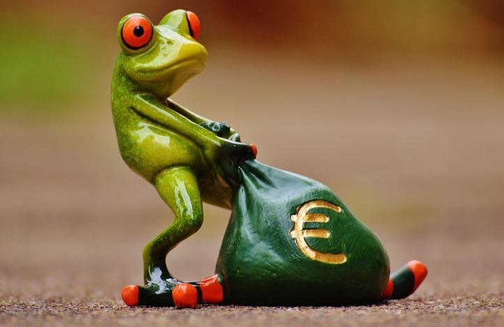 frog-1234780_960_720
